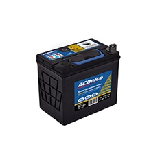 ACDelco Lawn and Garden Battery