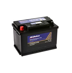 ACDelco Automotive Flooded Battery